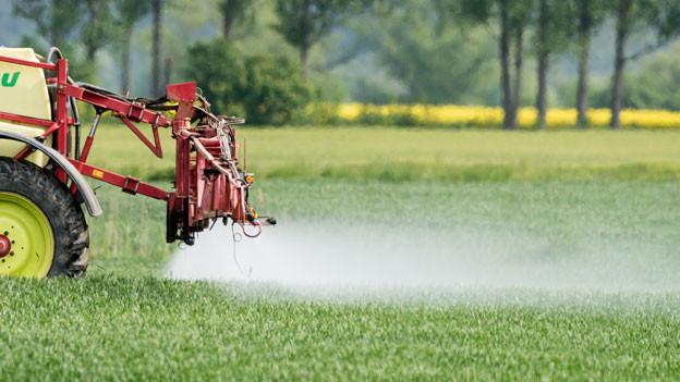 Ein Landwirt fährt mit einer Dünger- und Pestizidspritze über ein Feld mit jungem Getreide.
