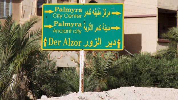 Das Bild zeigt die grüne Ortstafel von Palmyra, dahinter ein