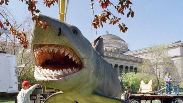 """""""Jaws"""" im Museum"""