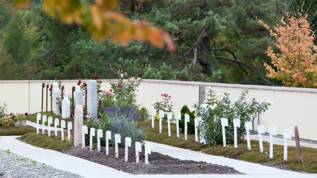 Islamisches Grabfeld auf dem Friedhofs Witikon in Zürich