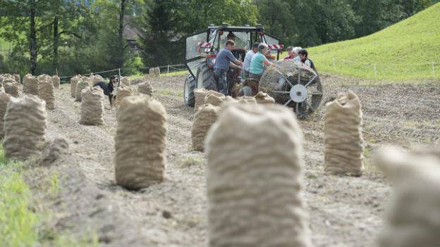 Bauern bei der Kartoffelernte in der Nähe von Luthern im Kanton Luzern.