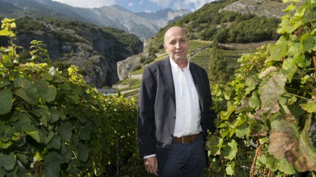 Wein illegal verschnitten: Jean-René Germanier in einem seiner Rebberge.