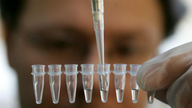 Ein Forscher hält eine Pipette über ein Gefäss mit Erbgutproben.