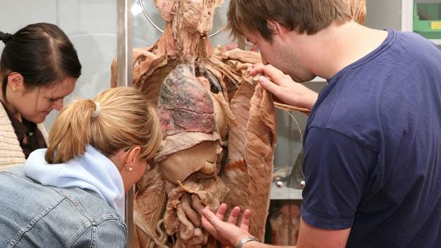 Junge Menschen studieren das Innenleben einer plastinierten Leiche.