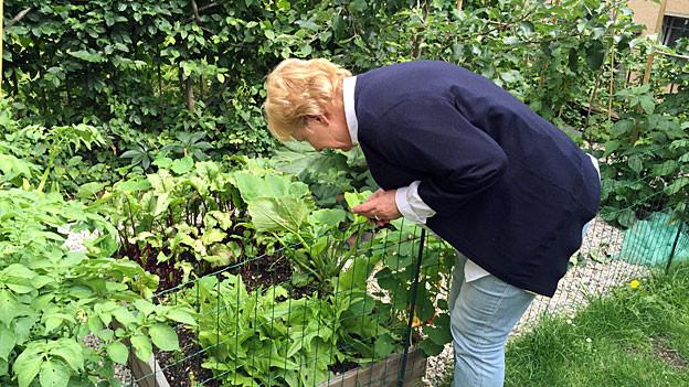 Annemarie Wildeisen, in Jeans, weisser Bluse und dunkelblauer Jacke im wuchernden Grün ihre Gemüse- und Kräutergartens in Bern.