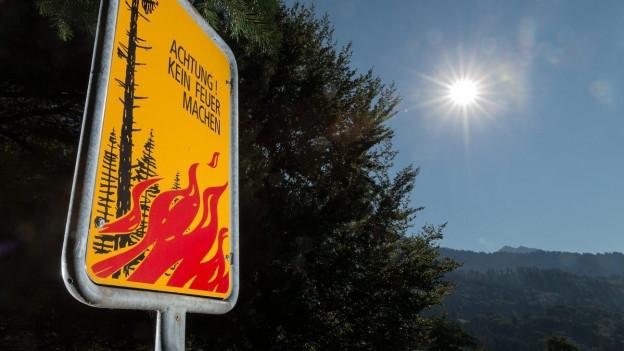 Feuerverbots-Tafel vor Wald und gleissender Sonne.