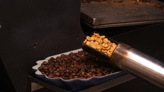In einer Schale liegen dunkelbraun geröstete Kaffeebohnen; in einer Art Kelle sind gelblich helle Bohnen.