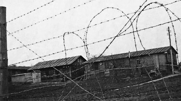 Baracken hinter Stacheldraht: Ein Bild des Straflagers Wauwilermoos aus dem Film «Notlandung».