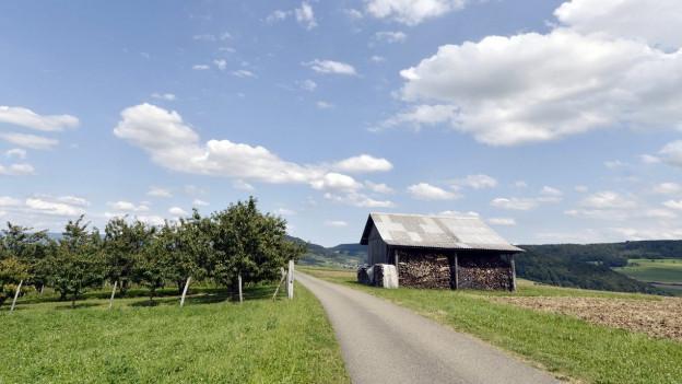 Zu sehen ist als wertvoll eingestuftes Kulturland bei Magden im Aargau.