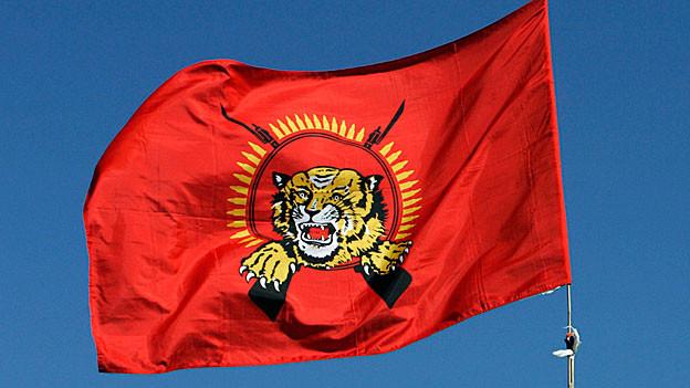 Eine Flagge der «Tamil Tigers» weht vor einem strahlend blauen Himmel.