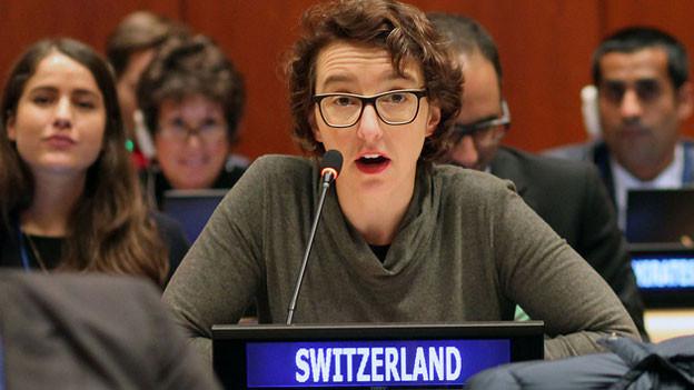 Tatjana von Steiger, Ministerin der Schweiz bei der UNO in New York