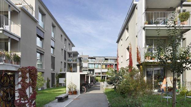 Die Siedlung Burgunger in Bern Bümpliz.