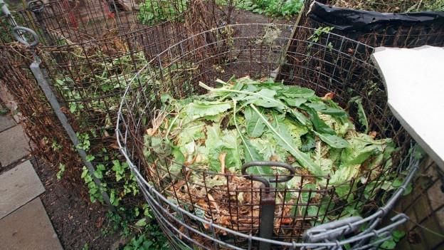 Küchenabfälle auf einem Komposthaufen.