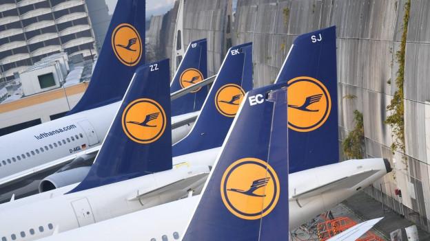 Verschiedene Heckflossen mit dem Lufthansa-Logo.