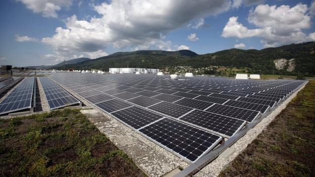 Solarpanels auf einem Feld in Neuendorf (2013).