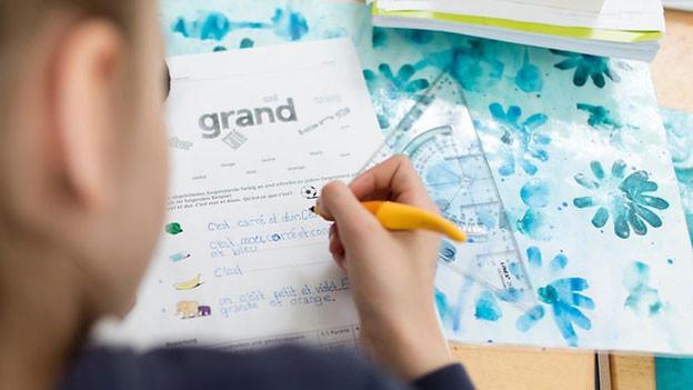 Mit 64 zu 53 Stimmen beschloss der Grosse Rat des Kantons Thurgau, den Französischunterricht aus der Primarschule zu verbannen.