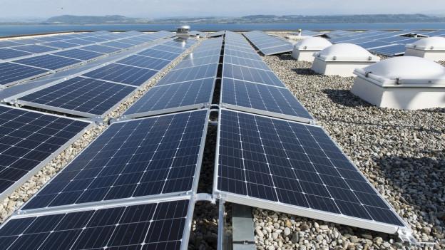 Schwarzglänzende Solarzellen mit weissem Gittermuster auf einem Hausdach.