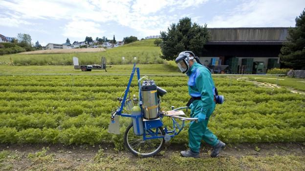 Auf dem Bild zu sehen ist ein Mann der Pestizide auf einem Gemüsefeld versprüht