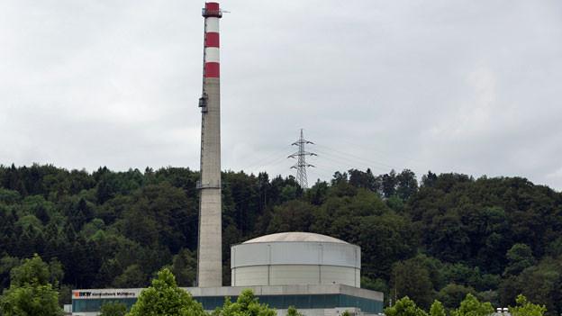 In der Schweiz wird das Kernkraftwerk Mühleberg als erste der fünf Anlagen 2019 ausser Betrieb gehen. Bis 2030 sollen auf dem ehemaligen Kernkraftwerksgelände wieder Kühe weiden.