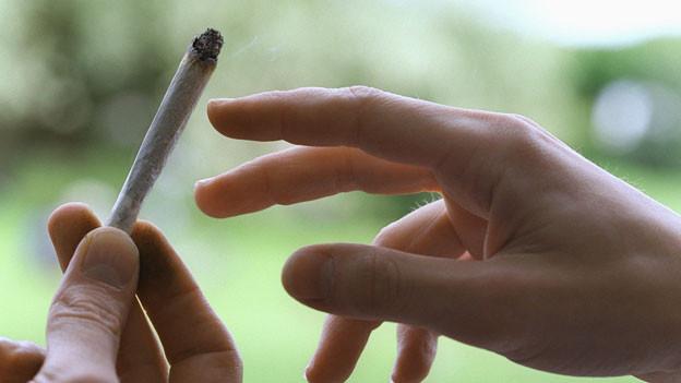 Je mehr der Konsum legalisiert werde, desto mehr Geld könne man auch legal mit Cannabis verdienen, sagt ein Anlage-Stratege.