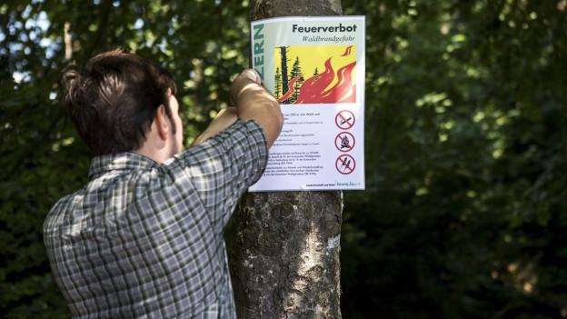 Das Bild zeigt einen Revierförster im Kanton Luzern, wo derzeit in gewissen Gebieten ein Feuerverbot in Wäldern und Waldesnähe herrscht.