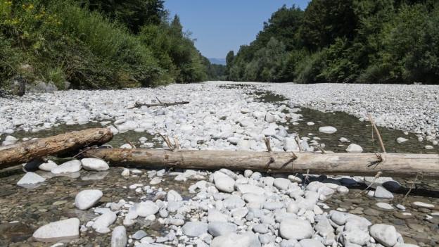 Ein ausgetrocknetes Flussbett.