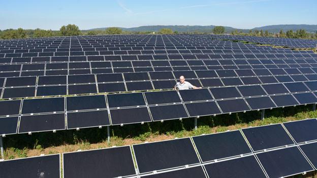 Bene Müller, Geschäftsführer von Solarcomplex aus Singen (D), inmitten einer Solaranlage auf einer stillgelegten Mülldeponie in der Nähe der Schweizer Grenze.
