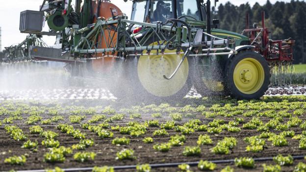 Ein Traktor sprüht Pflanzenschutzmittel auf Felder.