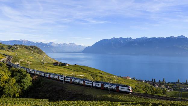 Auf dem Bild sind die Weinberge des Lavaux (VD) zu sehen und ein Zug der SBB.
