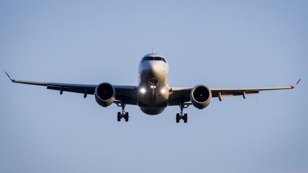 Ein Flugzeug landet auf dem Zürcher Flughafen