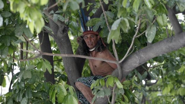 Ein Indigener versteckt sich in einem Baum in der Nähe des «Indian Museum» während der Proteste gegen das Maracana Stadion im Dezember 2013.