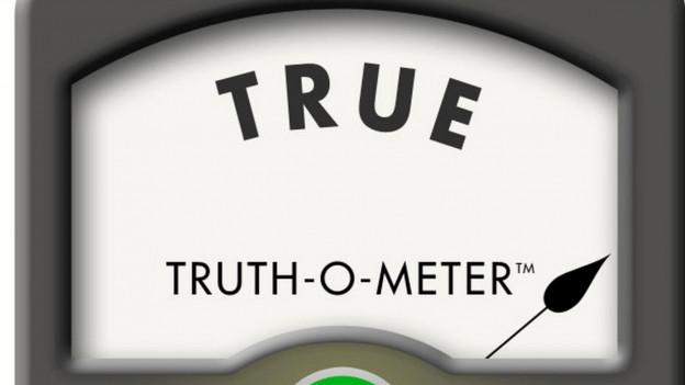 Die Anzeige einer Waage mit einem Zeiger, darüber steht «TRUE», darunter brennt ein grünes Licht.