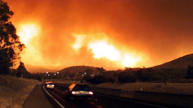 Katastrophales Buschfeuer: Canberra, Australien.