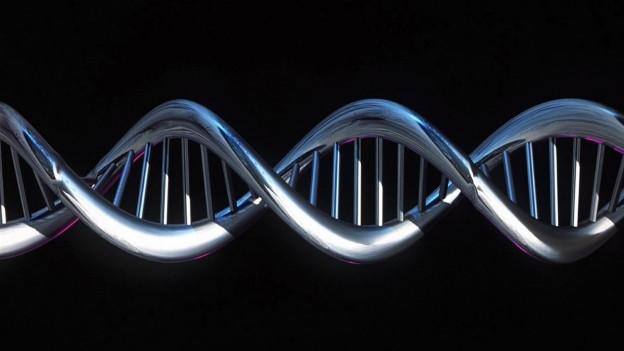Die DNA-Doppelhelix