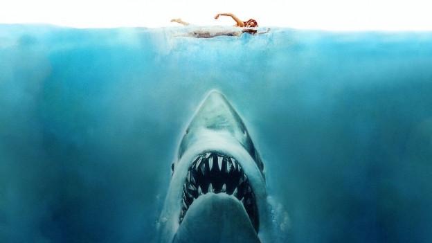 Verbreitete Angst und Schrecken: Der weisse Hai