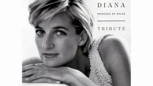 Diana Autounfall