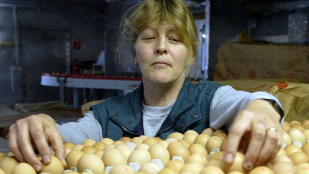 Frau sortiert Eier aus.
