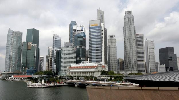 Die Skyline von Singapur mit den Wolkenkratzern vor dem Meer, der Himmel ist grau und bewölkt.