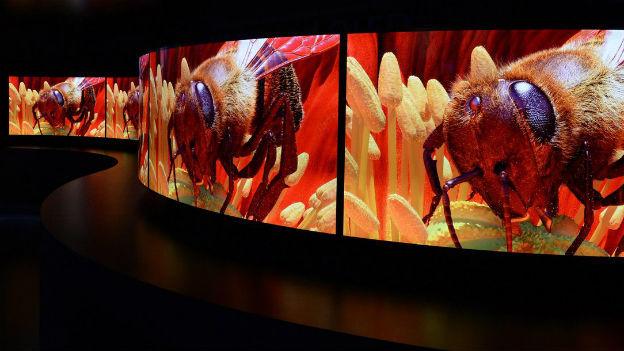 Schärfer, grösser und erst noch biegbar: Neue Displays an der Elektronikmesse CES in Las Vegas.