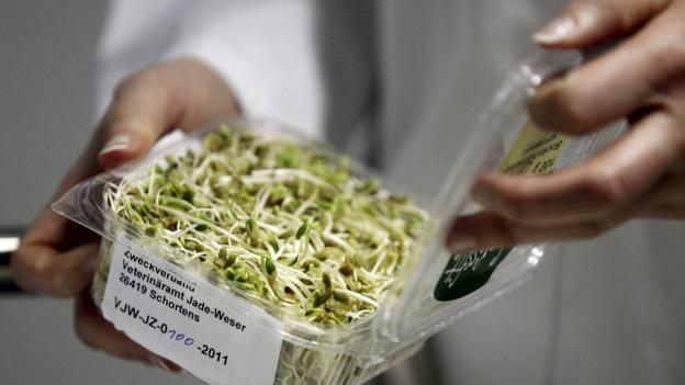 Eine Person in Laborkleidung hält ein Paket kontaminierter Bockshornklee-Sprossen