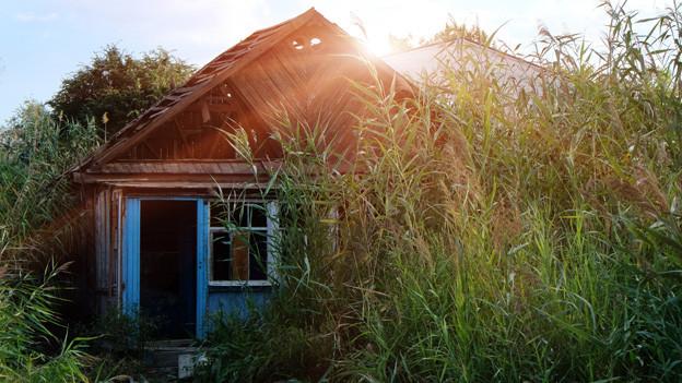 Eine einfache Hütte mitten im Schilf.