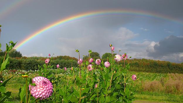 Regenbogen mit schwachem Nebenregenbogen, der eine umgekehrte Farbfolge aufweist.