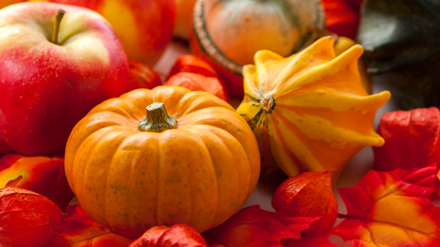 Der Herbst erfreut das Auge mit seinen warmen Farben.