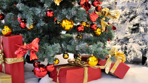 Der Baum ist geschmückt, die Geschenke verpackt: Endlich ist Heilig Abend!