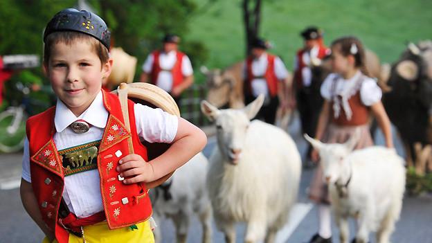 Ein junger Appenzeller bei der Alpfahrt im Juni 2011, unterwegs zur unteren Schwägalp.