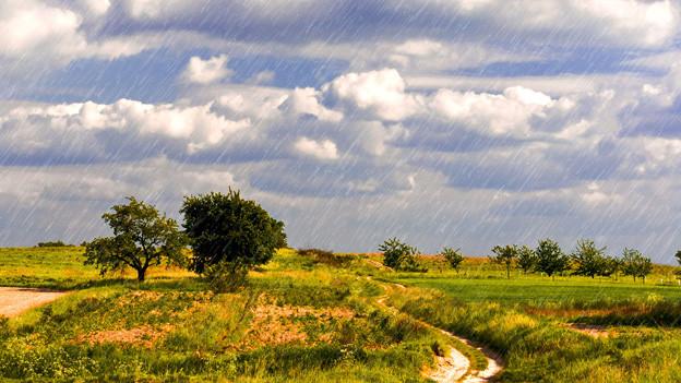 Mal Sonne, mal Regen: Das Wetter im Mai bietet von allem etwas.