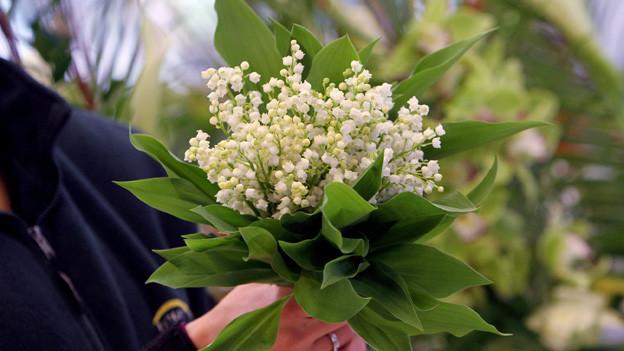 «Fiirabigmusig» im Wonnemonat Mai mit einem bunten Blumenstrauss Mailiedern.