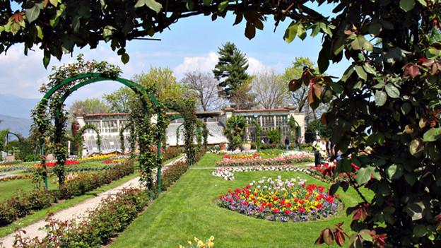 Ein herrlicher Rosengarten der zum Lustwandeln einlädt.