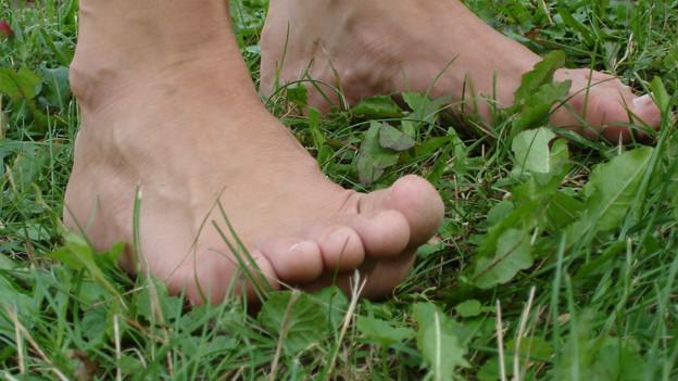 Barfuss über eine Sommerwiese gehen bedeutet Fitnesstraining für die Füsse.