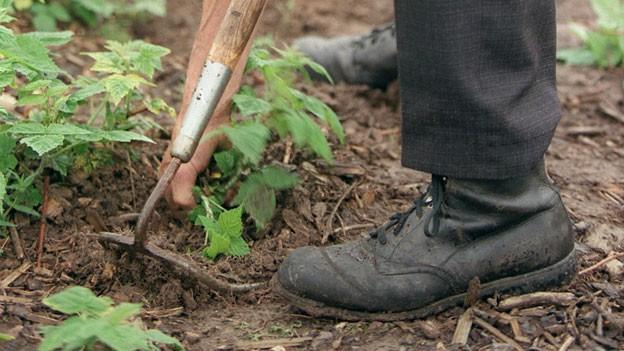 Gartenarbeit muss keine Rückenschmerzen verursachen.